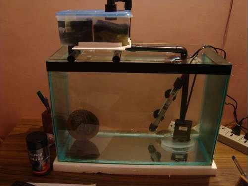 Build A Box Filtration System For Aquarium